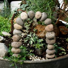 www.WeeTrees.com.... unique items for fairy garden and miniature landscapes!