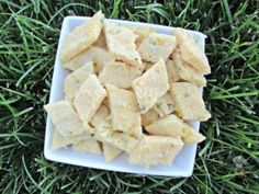 (wheat and gluten-free) mozzarella pineapple dog treat/biscuit recipe