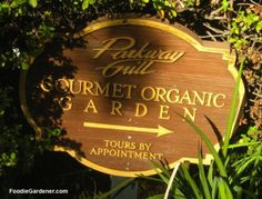 One of the highlights of my visit to Pasadena, California was an anniversary dinner at theParkway Grill, a restaurant that boasts its own organic gourmet garden! After a full day... Read the rest at FoodieGardener.com