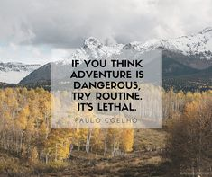 Beautiful travel quotes: if you think adventure is dangerous try routine its lethal - paulo coelho Know some one lookin Adventure Quotes, Adventure Travel, Adventure Tattoo, Affirmations, Wanderlust Quotes, Wanderlust Travel, Motivational Quotes, Inspirational Quotes, Sometimes I Wonder