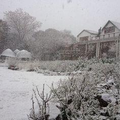 Snow near JHB
