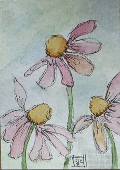 ACEO Cone Flowers drawn and watercolor Watercolor Painting Techniques, Watercolor Projects, Painting & Drawing, Watercolor Paintings, Watercolors, Watercolor Pictures, Watercolor And Ink, Watercolor Flowers, Inspiration Art