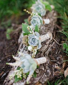 Bridesmaids at this woodsy wedding carried succulent clutches instead of traditional floral bouquets.