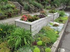 Sidewalk landscaping-build flower box: front drive: back edge patio