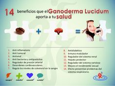 BENEFICIOS DEL GANO CAFÉ Ayurveda, Fails, Coffee, Healthy, Medicine, Shape, Nervous System, Health And Wellness, Natural Remedies