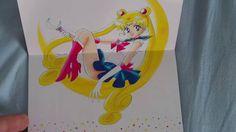 Sailor Moon Mangas (Unboxing, German Release) Ed Sheeran Divide Tour, Sailor Moon, Bunnies, German, Kitty, Sleeves, Deutsch, Little Kitty, German Language