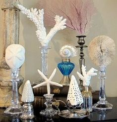 Use candle sticks as display stands for sea shells and sealife collected on the beach! http://www.completely-coastal.com/2011/04/homemade-display-stands-for-shells-and.html