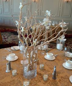 inexpensive wedding Reception Table Decorations | Wedding Reception Centerpieces On A Budget And In Your Color Scheme