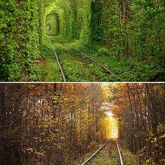 junatunneli