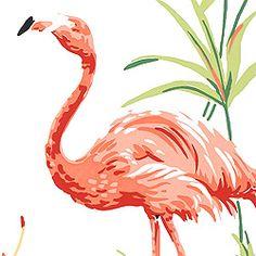 Thibaut Seaside - Flamingo Bay - Wallpaper - White