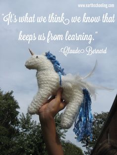 Earthschooling How to Knit a Unicorn