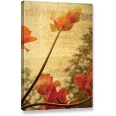 ArtWall Kevin Calkins Orange Tulip Gallery-Wrapped Canvas, Size: 24 x 36, Orange