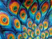 Texture ~ Galerie polepů vašeho zařízení ~ Samolepky na notebook