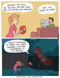 Azúcar para que no entren hormigas. #humor #risa #graciosas #chistosas #divertidas