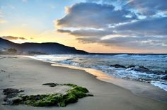 Photograph Malia Crete by Aris Vergas on Beautiful Islands, Beautiful World, Wonderful Places, Beautiful Places, Crete Holiday, Crete Island, Creta, Travel Log, Islands