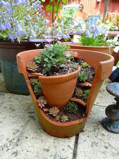Turn Broken Pots into a Miniature Garden