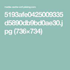 5193afe0425009335d5890db9bd0ae30.jpg (736×734)