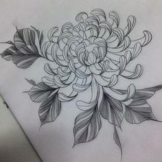 Artist: To submit your work to the page use the tag And do not forget to share the page! Black Tattoo Art, Black Tattoos, Tattoo Sketches, Tattoo Drawings, Flower Drawings, Crisantemo Tattoo, Crysanthemum Tattoo, Mangas Tattoo, Japanese Flowers