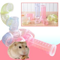 Hamster Cage Accessories Hamster Pipeline Multifunctional DIY External Tunnel  Price: 1.99 & FREE Shipping   #Pets #Shophorses #Shopreptiles #Shopfish #Shophamsters #Letsgoshopping Hamster Toys, Hamsters, Rodents, Cat Toys, Animal Jewelry, Multifunctional, Dog Bed, Cage
