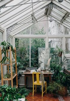 HOW TO LOOK AFTER YOUR PLANTS Book review: HOUSE OF PLANTS by Caro Langton & Rose Ray #conservatorygreenhouse