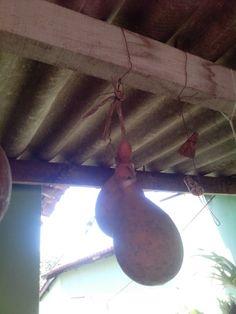 Cabaça (Large gourd)