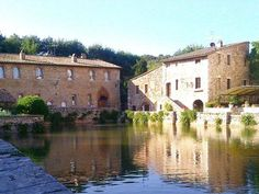 Housesitting assignment in Siena, Italy