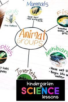 Little SCIENCE Thinkers! Kindergarten Science Curriculum
