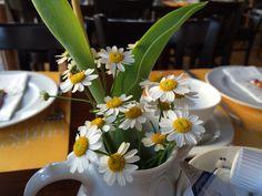 MuseumsCafe Zeisset - unsere Tischdeko