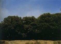 Gerhard Richter | Bäume Trees 1987 52 cm x 72 cm Catalogue Raisonné: 628-2 Oil on canvas