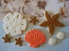 Starfish, sand dollar and seashell cookies