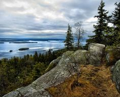Koli on Suomen kuuluisimpia maisemia. Information Center, Story Inspiration, Outdoor Life, Peace Of Mind, Love Photography, Denmark, Norway, Sweden, Natural Beauty
