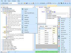Palopo IT Community: Database .NET 13.6.5430