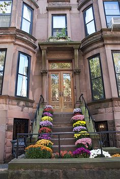 brownstone house | Chrysanthemums on a Park Slope Brownstone Home, Brooklyn New York ... love the flowers