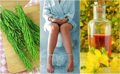 6 Home Remedies to Cure Hemorrhoids Naturally Beat Diabetes, Home Remedies, Natural Remedies, The Doctor, Les Allergies, Regulate Blood Sugar, Cure Diabetes Naturally, Growth Factor