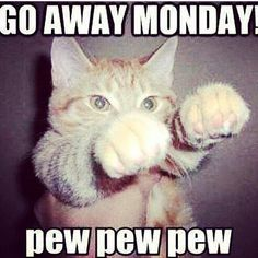 Go Away Monday - pew pew pew >> Actually, I LOVE Mondays, but - this is SO stinkin' cute! :)
