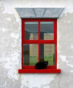 Black cat in the red window. Animals And Pets, Cute Animals, Cat Window, Owning A Cat, Curious Cat, All Gods Creatures, Through The Looking Glass, My Animal, Windows And Doors