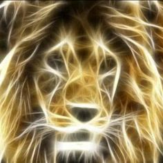 As the Lion of Judah, He fulfills the prophecy of Genesis 49:9 and is the Messiah who would come from the tribe of Judah. As the Lamb of God, He is the perfect and ultimate sacrifice for sin. Two aspects of Christ's nature