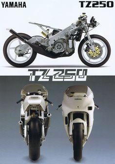 Cbr 250 Rr, Gp Moto, Yamaha 250, Cars And Motorcycles, Motorbikes, Racing, Bicycles, Vehicles, Track