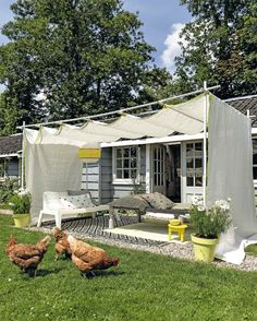 For right around $200 you too can create this super stylish and functional awning for your backyard or patio. I predict many outdoor meals in your future, if not a couple of chickens roaming around the yard.