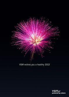 Nature's Firework | Creative Ad Awards