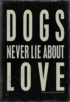 TRUE! That's why I love them! Cats definitely lie...I forgive them