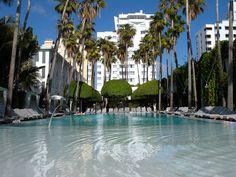 A Miami classic, The Delano poolside