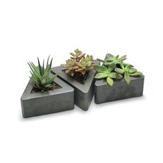 Triangle Concrete Pots // Set of 3 By Pawel Mikoluk This set of triangular pots brings a modern industrial vibe to any space