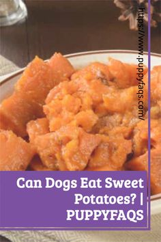 Visit here to check out can dogs eat sweet potatoes on PuppyFAQS Blog! If you are looking to find out if it's safe to give your puppy mashed or raw sweet potatoes, then this is the blog post for you! For the definitive guide on Can Dogs Eat Sweet Potatoes, click to be directed to the PuppyFAQS blog. If you still need help after reading our article on whether or not your pooch can eat sweet potatoes, please leave us an email at liz@puppyfaqs.com and we'll get back as soon as possible. Sweet Potato Benefits, Raw Sweet Potato, Sweet Potato Dog Treats, Sweet Potato Skins, Make Dog Food, Best Dog Food, Homemade Dog Food, Dog Food Bowl Stand, Dog Food Bowls