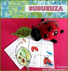 lectia despre buburuze Full Bed Loft, Insects