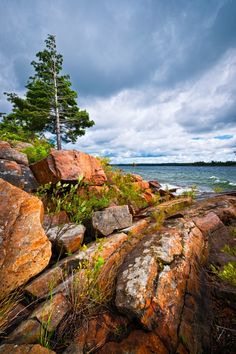 Rocky shore in Georgian Bay (Killbear Park, Ontario canada Landscape Photos, Landscape Photography, Nature Photography, Bay Photo, Rocky Shore, Visit Canada, Canada Travel, Amazing Nature, Cool Places To Visit