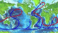 The great oceanic conveyor belt - Classroom@Sea » Learn