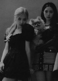Yg Entertainment, South Korean Girls, Korean Girl Groups, Blackpink Members, Kids Icon, Jennie Lisa, Black Pink Kpop, Photoshop, Blackpink Photos