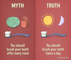 My life is a lie! I thought a lot of these myths were true until I saw these myth vs reality memes.
