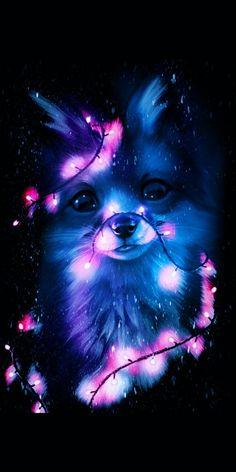 Cute Galaxy Wallpaper, Wolf Wallpaper, Cute Wallpaper Backgrounds, Animal Wallpaper, Cute Wallpapers, Baby Wallpaper, Cute Animal Drawings Kawaii, Cute Cartoon Animals, Anime Animals